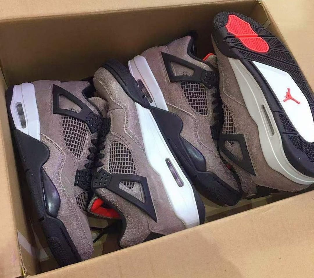 Air Jordan 4 Retro 'Taupe Haze' DB0732-200 First Look