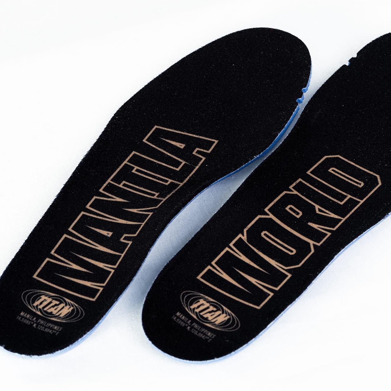 Titan x Nike LeBron 17 Low CD5008-600 (Insole)