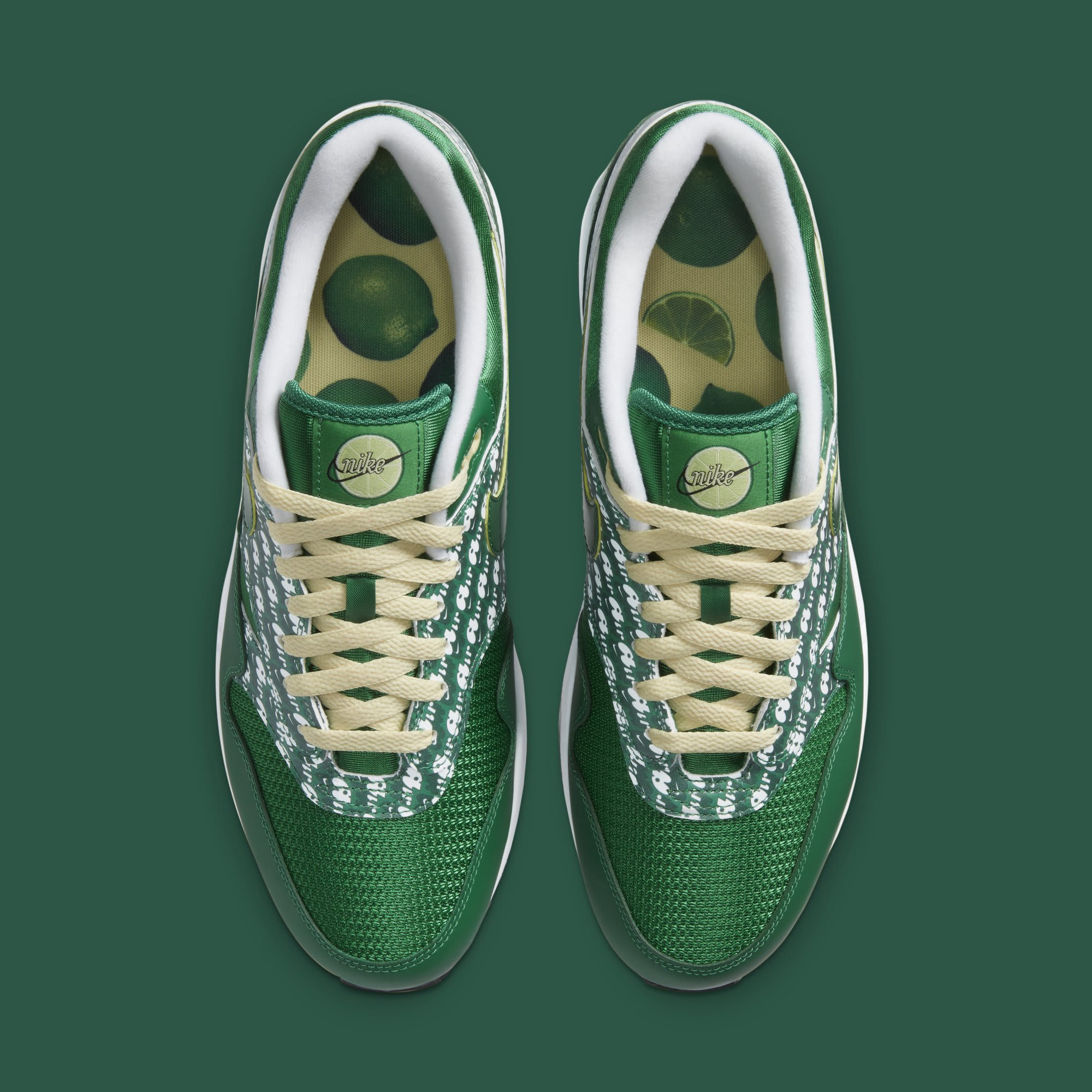 Nike Air Max 1 Premium 'Pine Green' CJ0609-300 Top